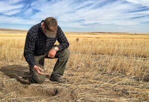 خشکسالی بیسابقه و بحران غذایی در آمریکا